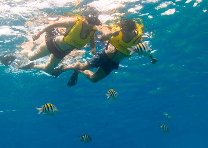 tourscancun-cozumel-plus-snorkel-reef