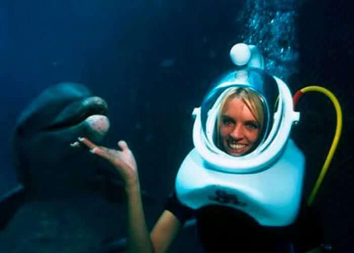 bucear-con-delfines-en-xelha