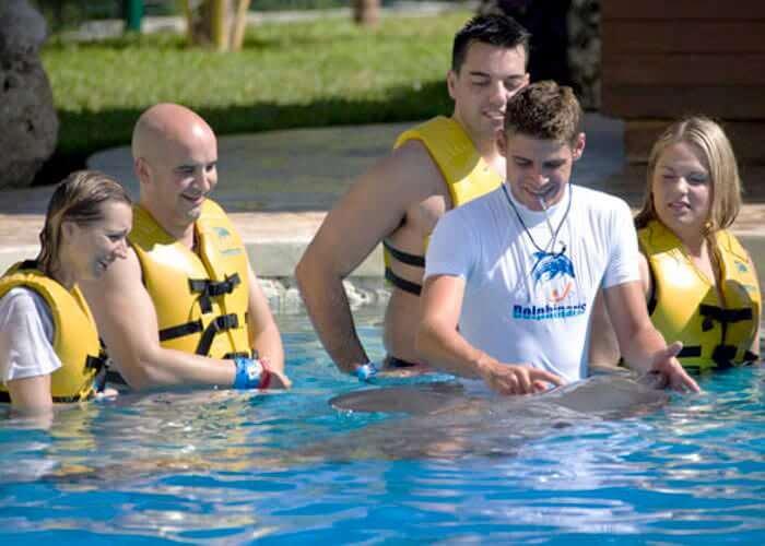 actividadescancun-nadarcondelfines-cancun-wetnwild