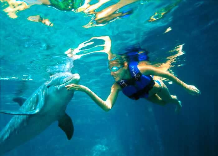 snorkel-con-delfines-en-xelha