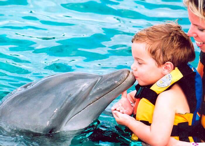 encontro-con-delfines-islamujeres-beso-delfin-bebe
