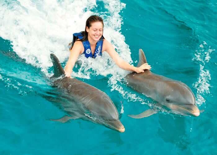 nadar-con-delfines-islamujeres-paseodorsal