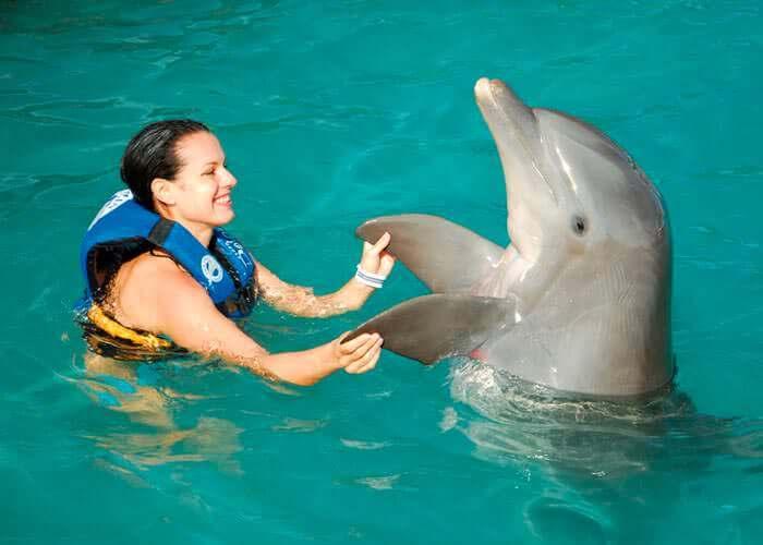 toursencancun-dolphinsdiscovery-islamujeres