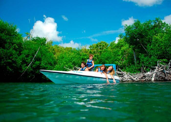 actividades-en-cancun-jungletour-express