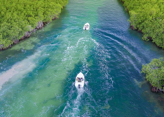 actividadescancun-jungletour-nauticpass-essential