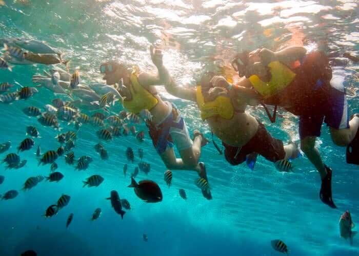 tours-cozumel-snorkel-arrecifes