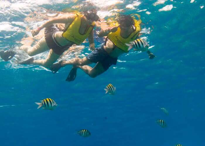 actividades-cozumel-snorkelear-arrecifes