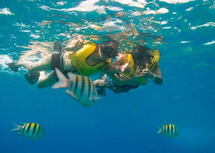 actividades-cozumel-snorkel