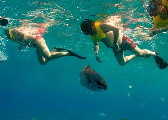tours-snorkel-cozumel-pareja