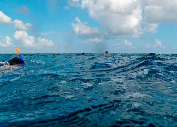 tours-cancun-snorkel-marcaribe