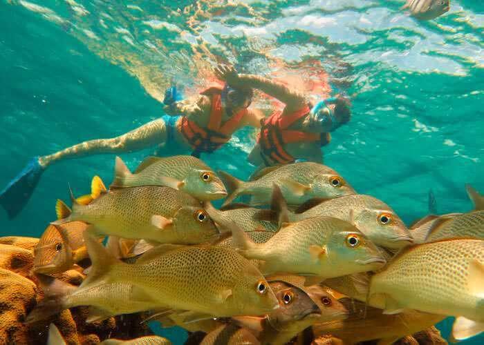 precios-tours-snorkel-cancun