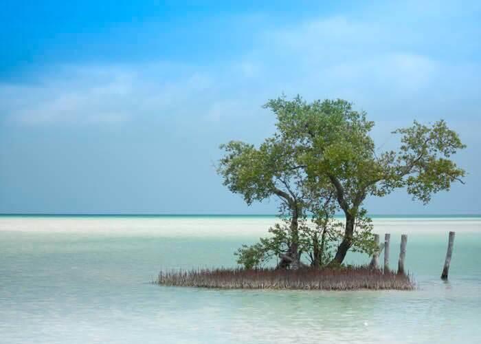 tour-a-isla-holbox-desde-cancun