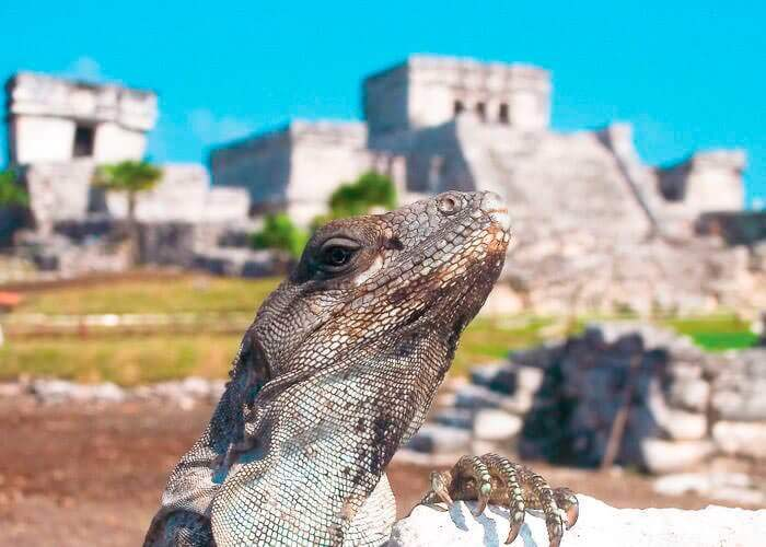 tours-tulum-a-cancun