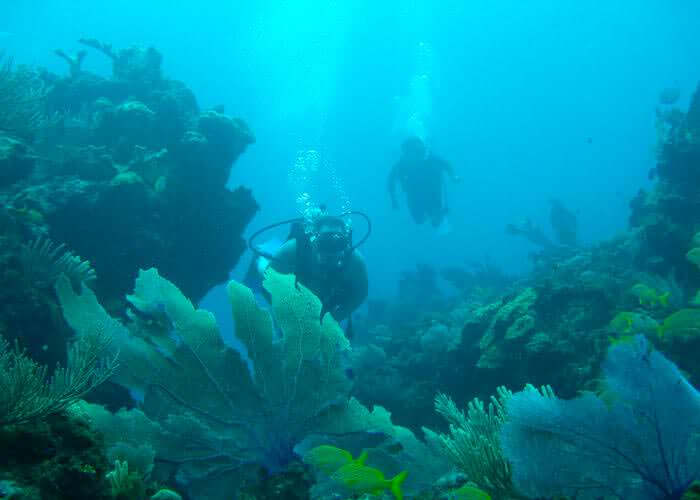 tours-cancun-buceo-musa-dostanques