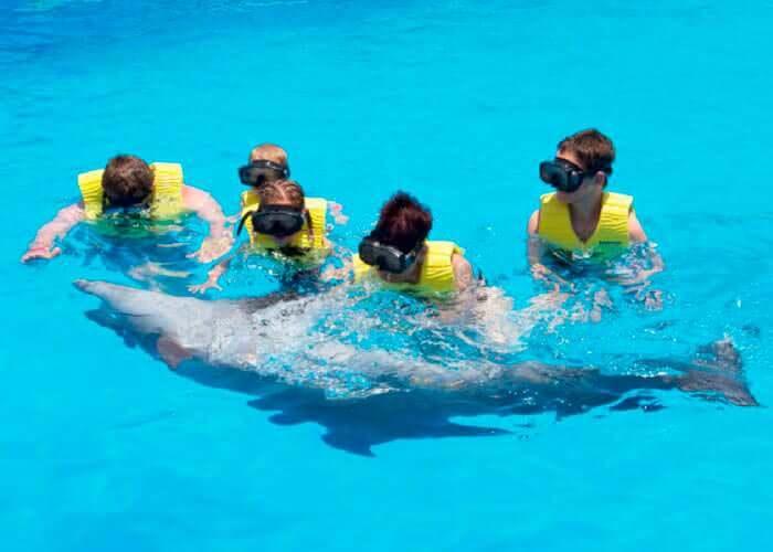 tours-tulum-nadarcondelfines-snorkel