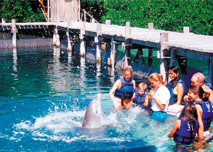 tour-parque-xcaret-y-nado-con-delfines