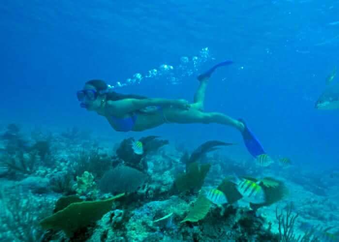 tours-xcaret-snorkel-en-caleta