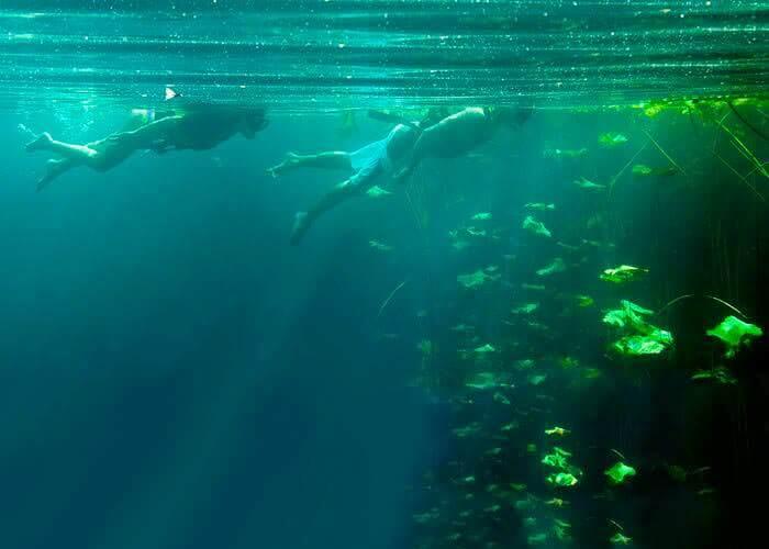 cenotes-cancun-mexico-xenotes