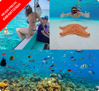 Tours y Excursiones en Cozumel