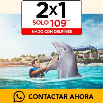 Promociones del Buen Fin Nado con Delfines;