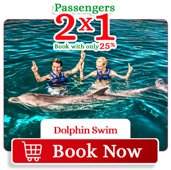 Spring Breack special deal 2x1 Dolphin Swim Cancun Aquarium