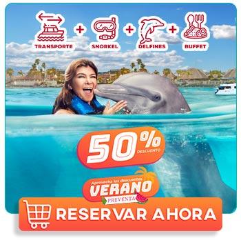 Mujer nadando con un delfin en isla mujeres