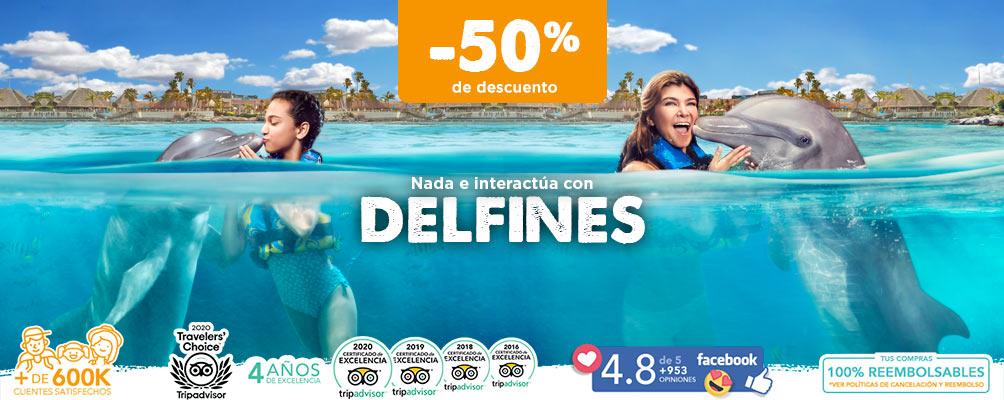 Tours nado con delfines en Cancún y riviera maya