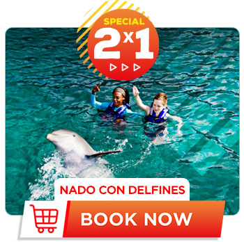 Spring Breack special deal 2x1 Dolphin Swim Cancun Aquarium