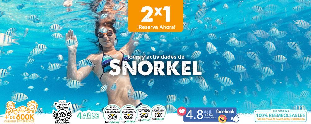 Tours y actividades de snorkel en cozumel e isla mujeres y cancun
