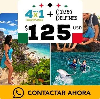 Acuario de cancun show de delfines y nado con delfines, aventura en Tulum, nado en cenotes de Cobá paseo en playa del Carmen