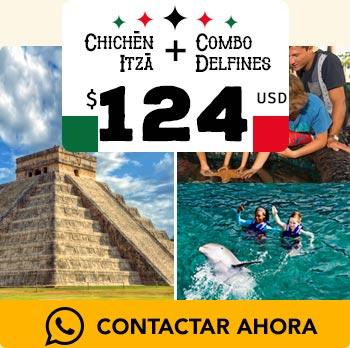 Zona arquológica de Chichén Itzá pirámide maya nado con delfines en acuario de cancun y show de delfines