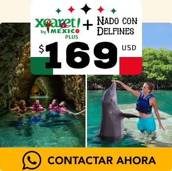 Tour xcaret plus rio subterraneo jovenes nadando con delfines