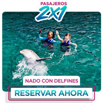 Nado con delfines y show de delfines en el acurio de Cancún al 2x1