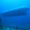 Tour Submarino Atlantis Cozumel