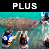 Tour Sealife Discovery Plus
