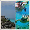 Tulum Tour + Snorkel con tortugas desde Canc�n