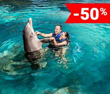 nados-delfines-cancun