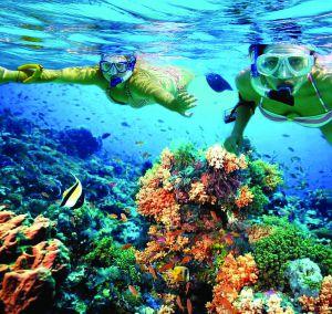 turistas haciendo snorkel en Isla Mujeres