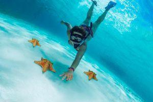 mujer joven nadando entre las estrellas de mar en El Cielo Cozumel