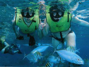 pareca de turistas snorkeleando en cozumel