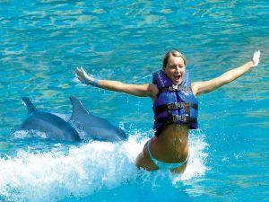 Mujer joven rubia siendo empujada por 2 delfines en experiencia e interacción con delfines