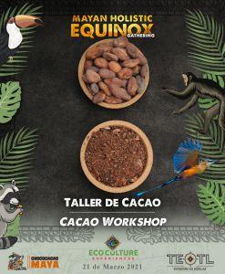 plato de cacao natural y cacao molido en polvo