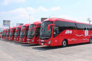 Flota de autobuses ADO de transporte publico en Cancún