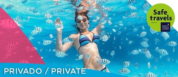 Mujer joven nadando entre peces tropicales en Cozumel
